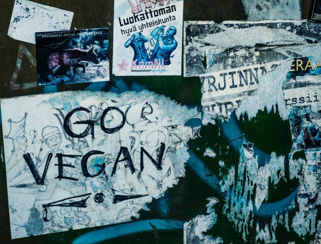 Chaussure-vegan-subtle--1024x779 Conseil & Entretien